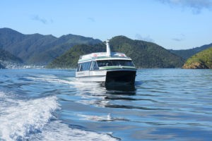 Day in the Marlborough Sounds