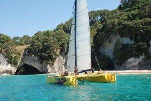 Coastal Sailing Experience & Forest Zipline Tour