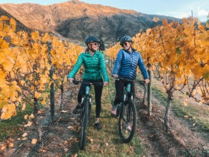 Cycle the Wineries of Queenstown