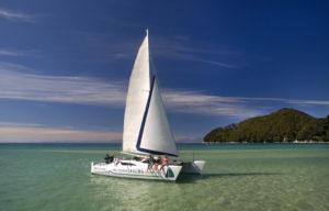Amazing Abel Tasman Sailing Afternoon