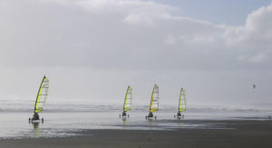 Muriwai Beach land sailing experience